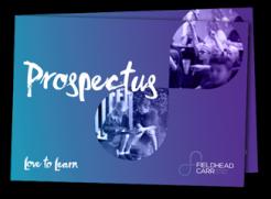 prospectus-mock2